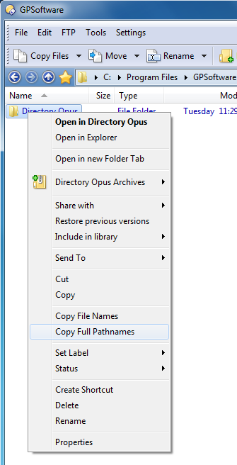 Commands to copy selected filenames to the clipboard - Opus